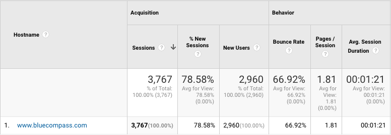 Include Only Hostname in Google Analytics