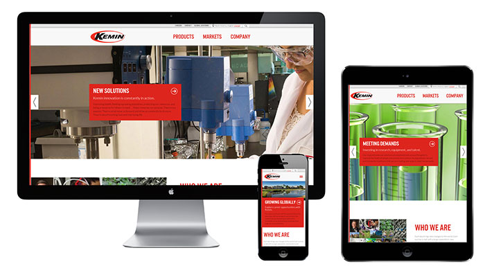 Blue Compass Re-Designs Kemin Industries Website