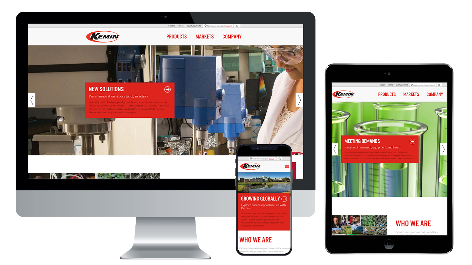 Kemin Industries Website Design Portfolio