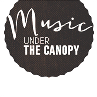 Music under the canopy website design by blue compass